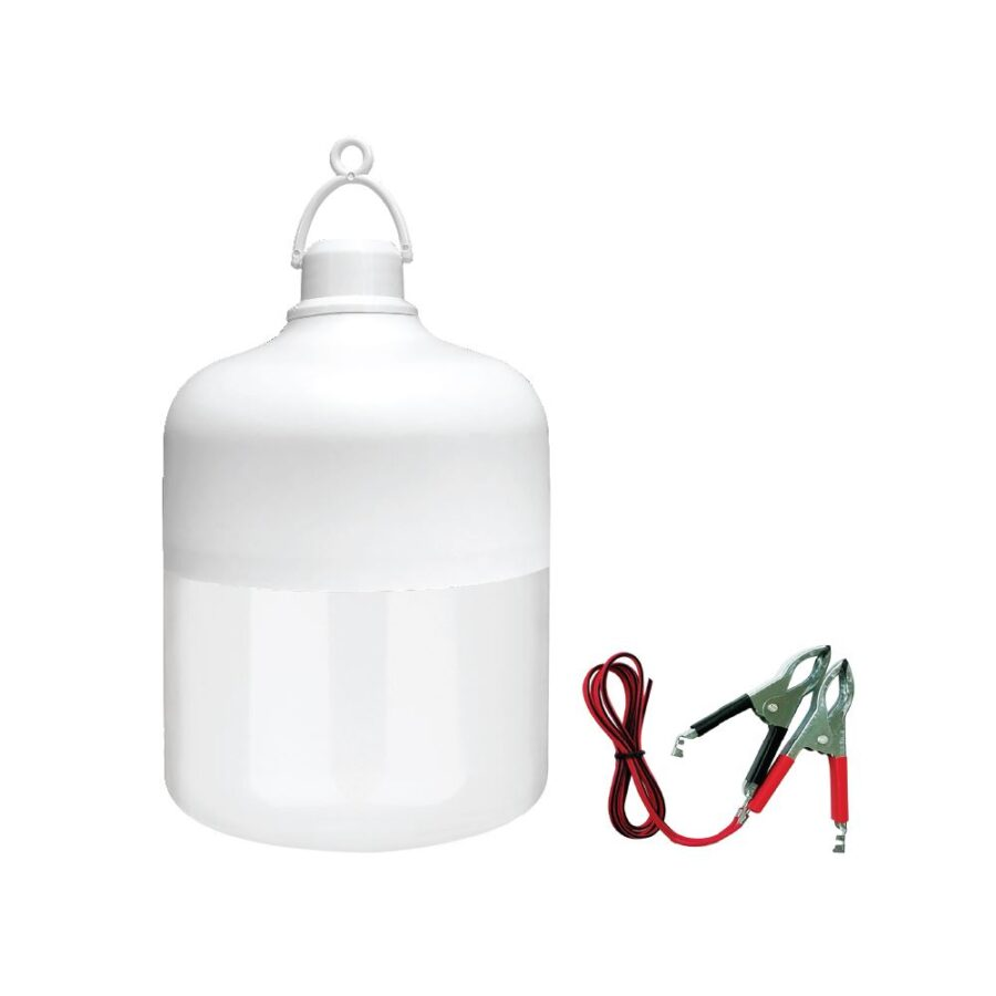 Đèn LED Bulb chạy điện DC (12V - 24V) ELB1924/12W